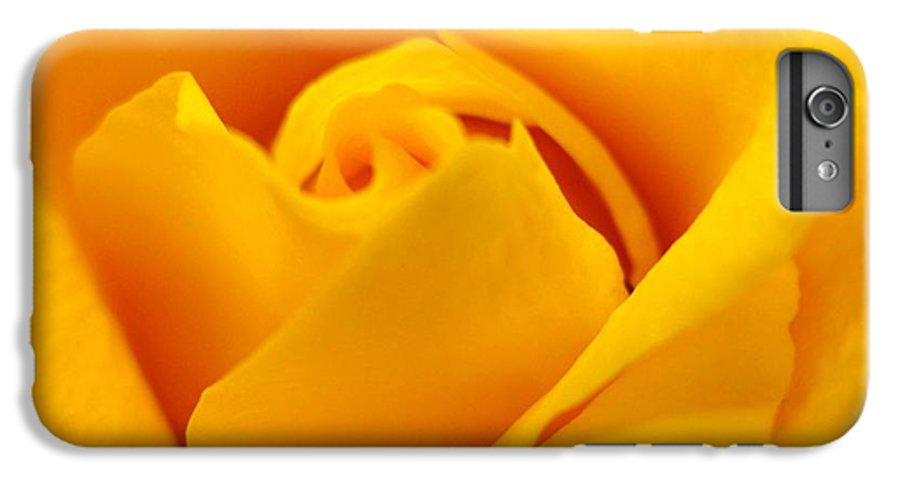 Rose IPhone 6 Plus Case featuring the photograph Rose Yellow by Rhonda Barrett