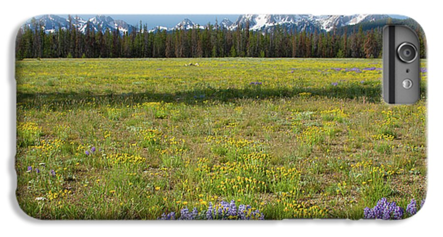 Wildflowers IPhone 6 Plus Case featuring the photograph Sawtooths And Wildflowers by Idaho Scenic Images Linda Lantzy