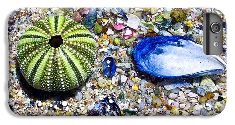 Seashore IPhone 6 Plus Case featuring the photograph Seashore Colors by Douglas Barnett