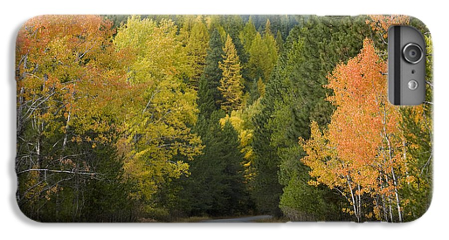 Trees IPhone 6 Plus Case featuring the photograph Selkirk Color by Idaho Scenic Images Linda Lantzy