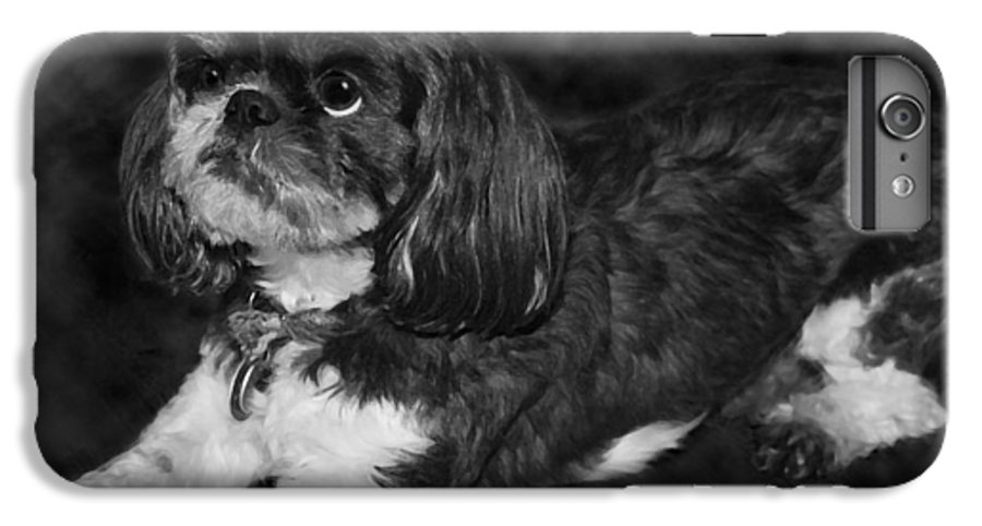 3scape Photos IPhone 6 Plus Case featuring the painting Shih Tzu by Adam Romanowicz