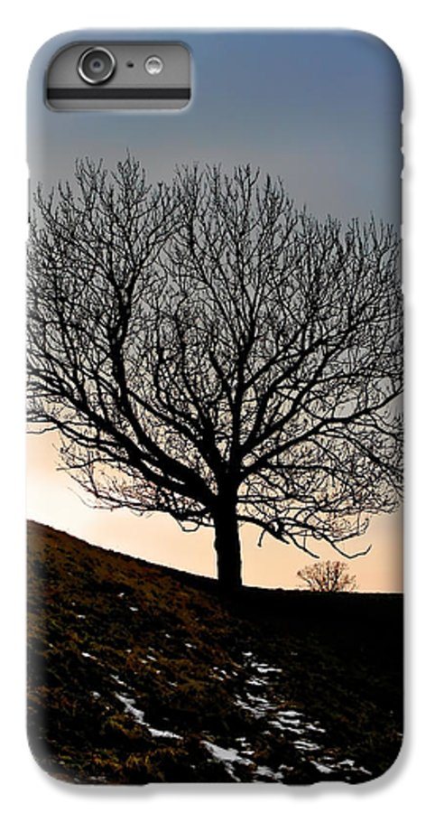 Tree IPhone 6 Plus Case featuring the photograph Silhouette Of A Tree On A Winter Day by Christine Till