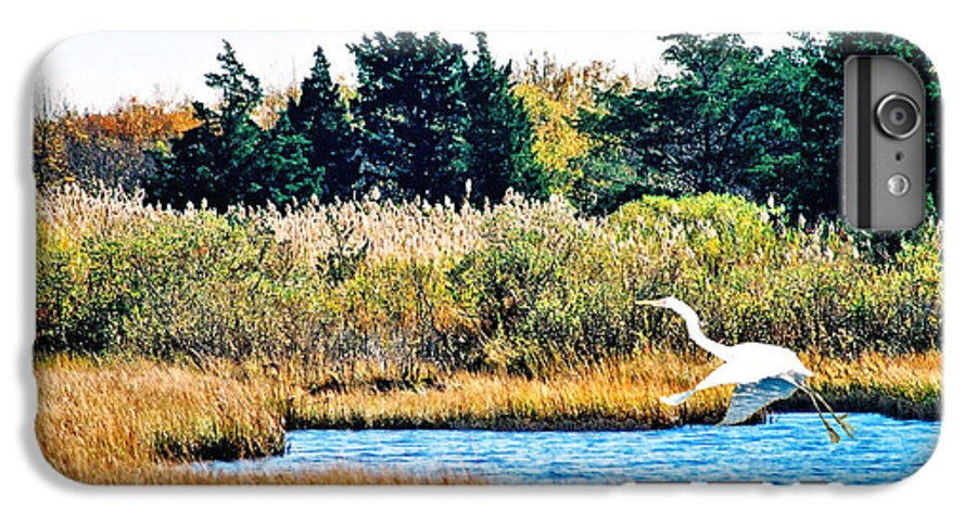 Landscape IPhone 6 Plus Case featuring the photograph Snowy Egret-island Beach State Park N.j. by Steve Karol