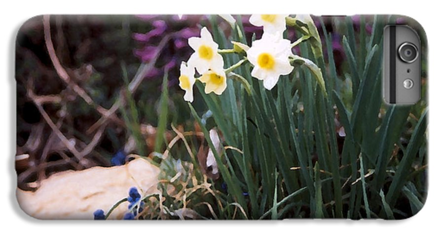 Flowers IPhone 6 Plus Case featuring the photograph Spring Garden by Steve Karol