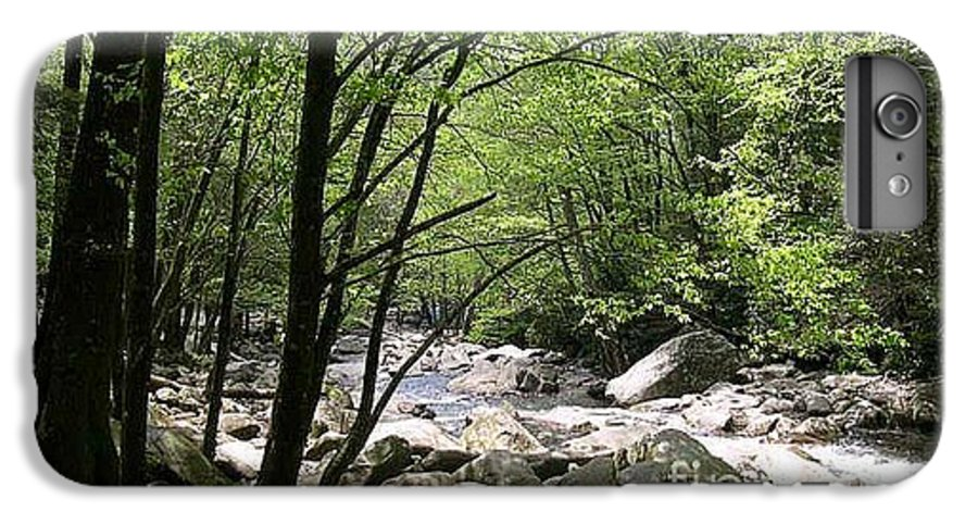 Nature IPhone 6 Plus Case featuring the photograph Springtime In The Smoky Mountains by Barb Montanye Meseroll