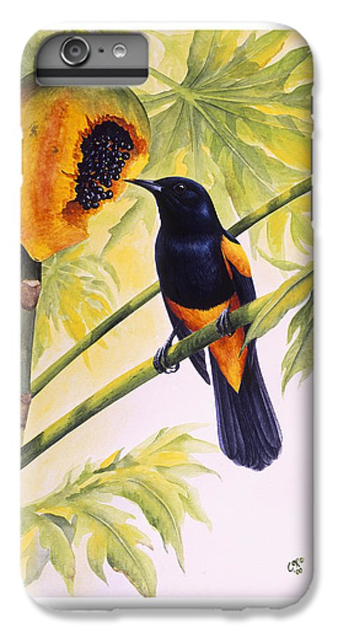 Chris Cox IPhone 6 Plus Case featuring the painting St. Lucia Oriole And Papaya by Christopher Cox
