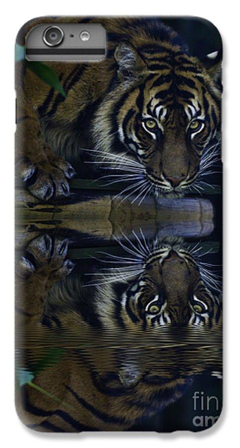 Sumatran Tiger IPhone 6 Plus Case featuring the photograph Sumatran Tiger Reflection by Sheila Smart Fine Art Photography