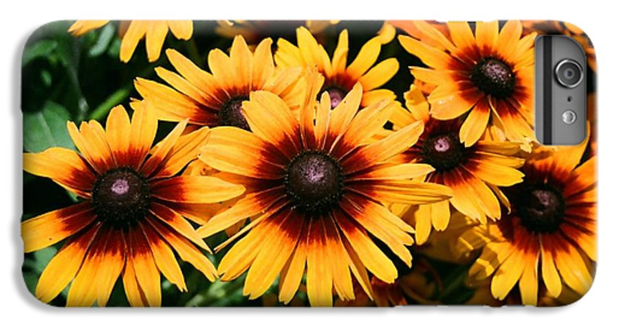 Sunflowers IPhone 6 Plus Case featuring the photograph Sunflowers by Dean Triolo