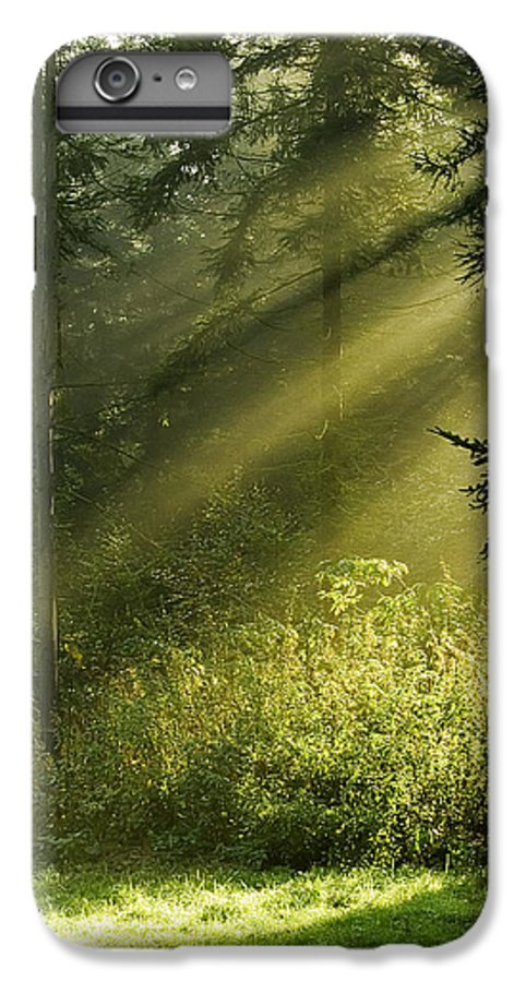 Nature IPhone 6 Plus Case featuring the photograph Sunlight by Daniel Csoka