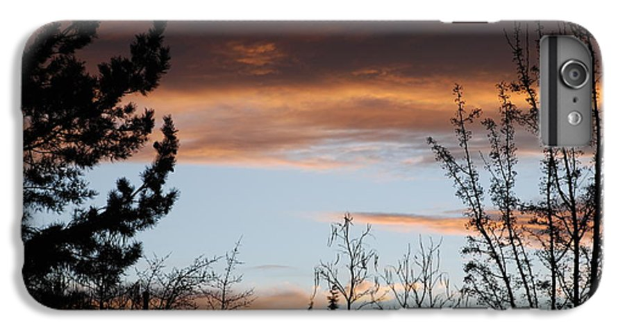 Sunset IPhone 6 Plus Case featuring the photograph Sunset Thru The Trees by Rob Hans