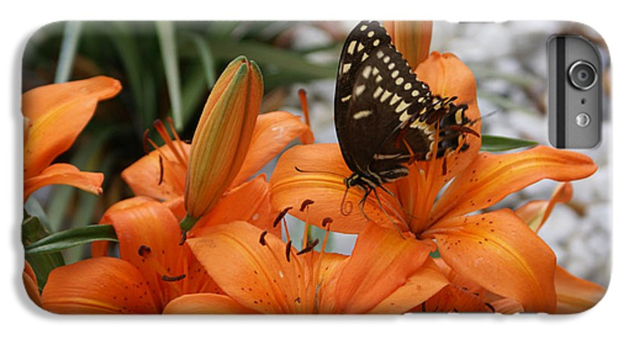 Easter Lilly IPhone 6 Plus Case featuring the painting The Descent by Debbie May