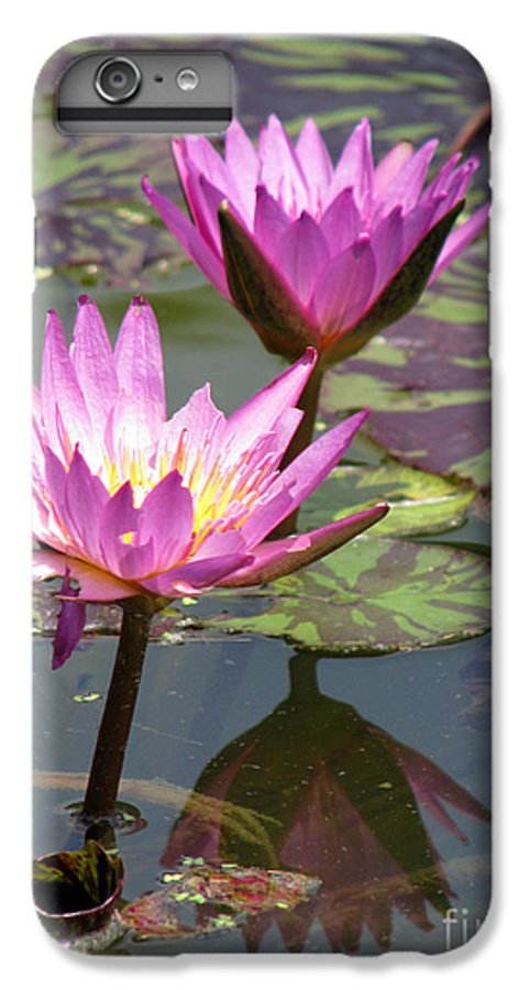 Lillypad IPhone 6 Plus Case featuring the photograph The Pond by Amanda Barcon