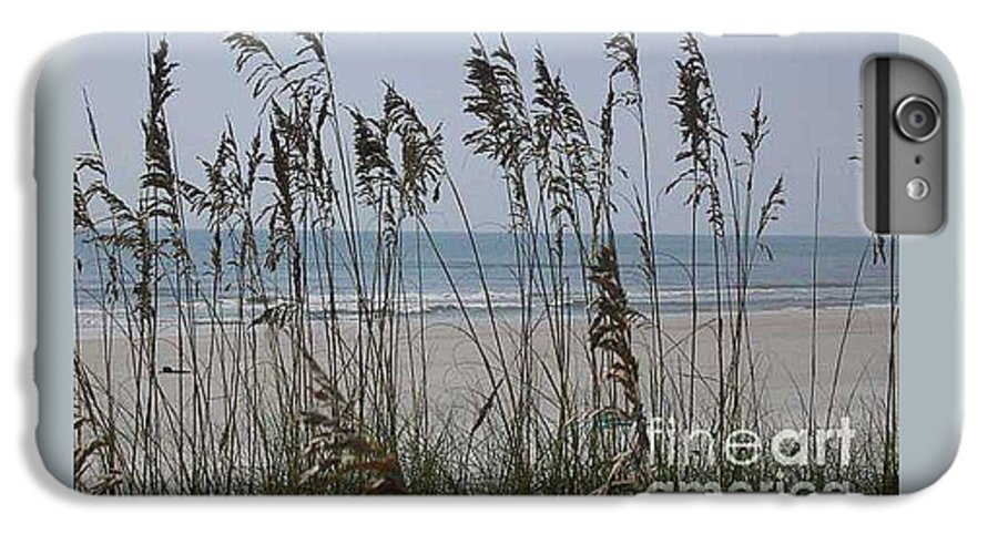 Florida Beach Near St. Augustine IPhone 6 Plus Case featuring the photograph Thru The Sea Oats by Barb Montanye Meseroll
