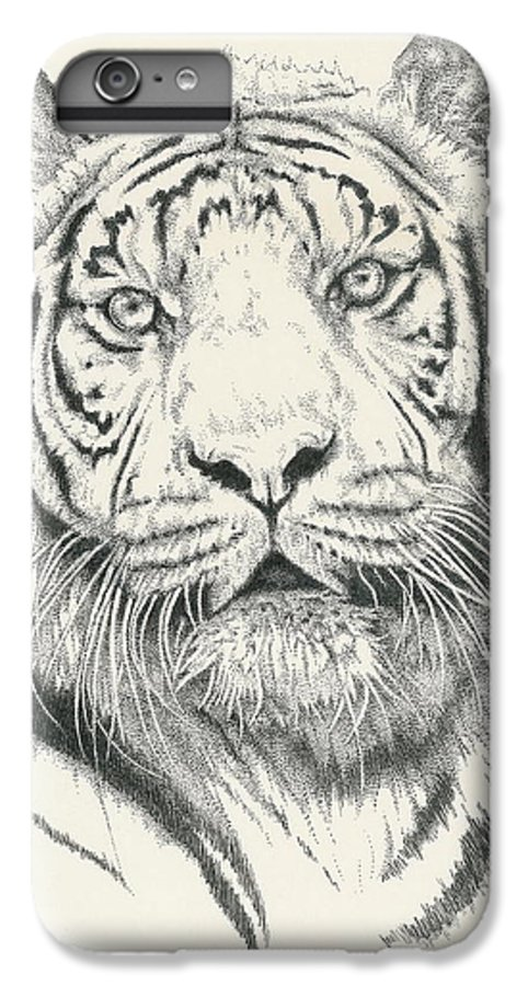 Tiger IPhone 6 Plus Case featuring the drawing Tigerlily by Barbara Keith