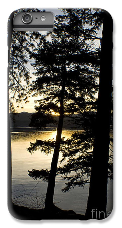 Trees IPhone 6 Plus Case featuring the photograph Trees By The Lake by Idaho Scenic Images Linda Lantzy