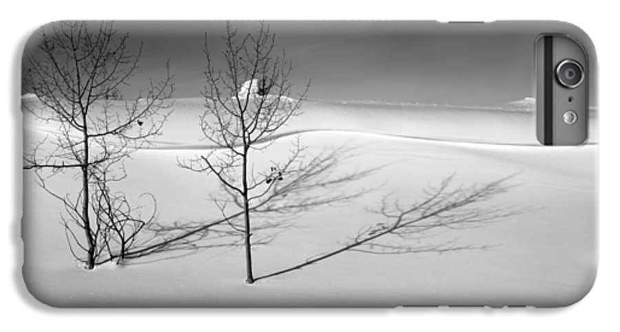 Nature IPhone 6 Plus Case featuring the photograph Twins by Skip Hunt