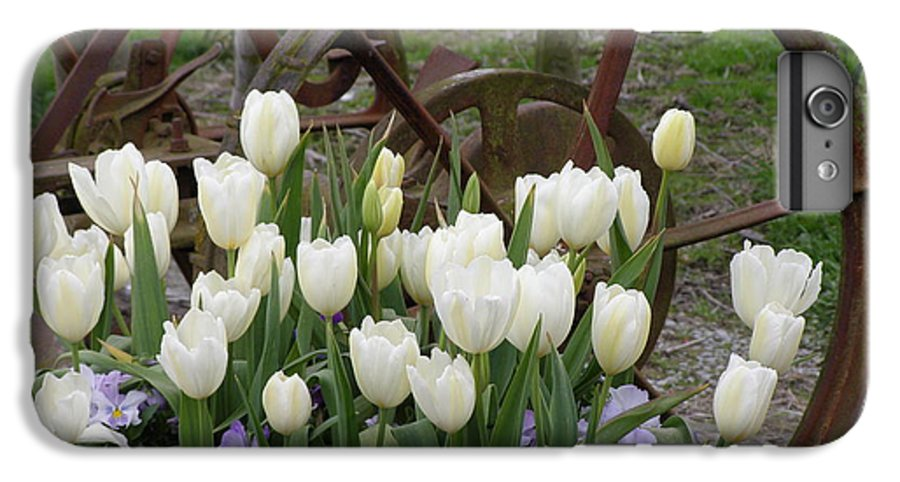 White IPhone 6 Plus Case featuring the photograph Wagon Wheel Tulips by Louise Magno