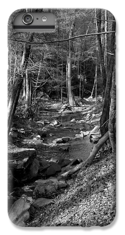 Nature IPhone 6 Plus Case featuring the photograph Wesser Creek Trail by Kathy Schumann