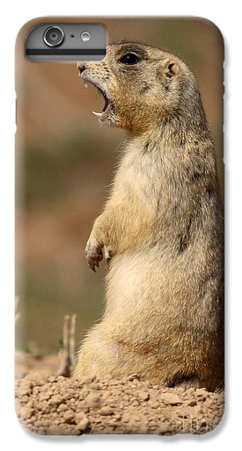 Prairie Dog IPhone 6 Plus Case featuring the photograph White-tailed Prairie Dog Giving A Fierce Bark by Max Allen
