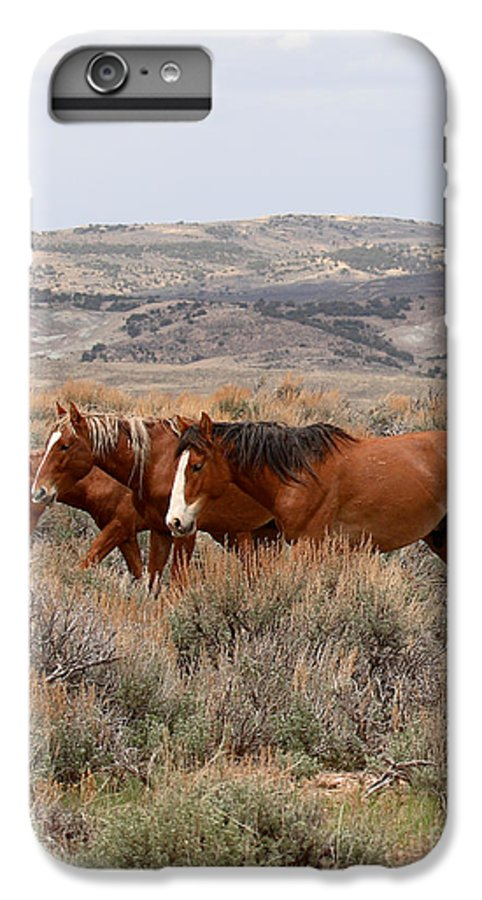 Horse IPhone 6 Plus Case featuring the photograph Wild Horse Trio by Max Allen