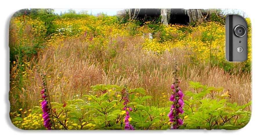 Stump IPhone 6 Plus Case featuring the photograph Wildflowers by Idaho Scenic Images Linda Lantzy
