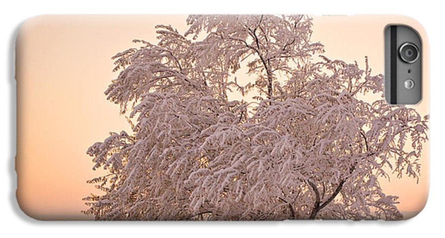 Winter IPhone 6 Plus Case featuring the photograph Winter Sunset by Marilyn Hunt