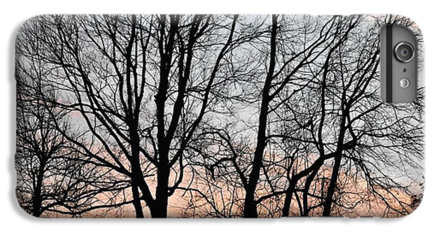 Trees IPhone 6 Plus Case featuring the photograph Pink Sky by Cassidy Marshall