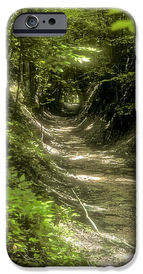 Natchez Trace Parkway Parkways Tree Trees S Nature Mississippi Landscape Landscapes Path Paths IPhone 6s Case featuring the photograph A Hole In The Forest by Bob Phillips