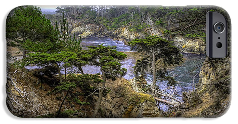 Point Lobos IPhone 6s Case featuring the photograph Cypress by Stephen Campbell