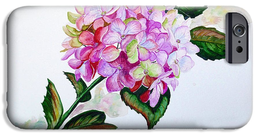 Hydrangea Painting Floral Painting Flower Pink Hydrangea Painting Botanical Painting Flower Painting Botanical Painting Greeting Card Painting Painting IPhone 6s Case featuring the painting Pretty In Pink by Karin Dawn Kelshall- Best