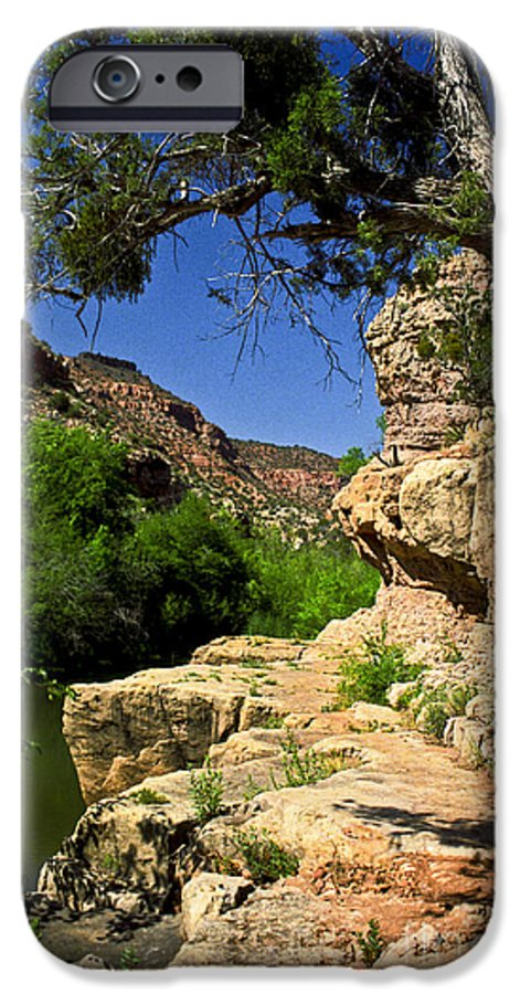 Arizona IPhone 6s Case featuring the photograph Sycamore Canyon by Kathy McClure
