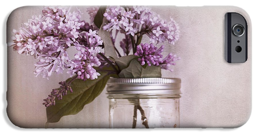 Cherry IPhone 6s Case featuring the photograph Lilac And Cherries by Priska Wettstein