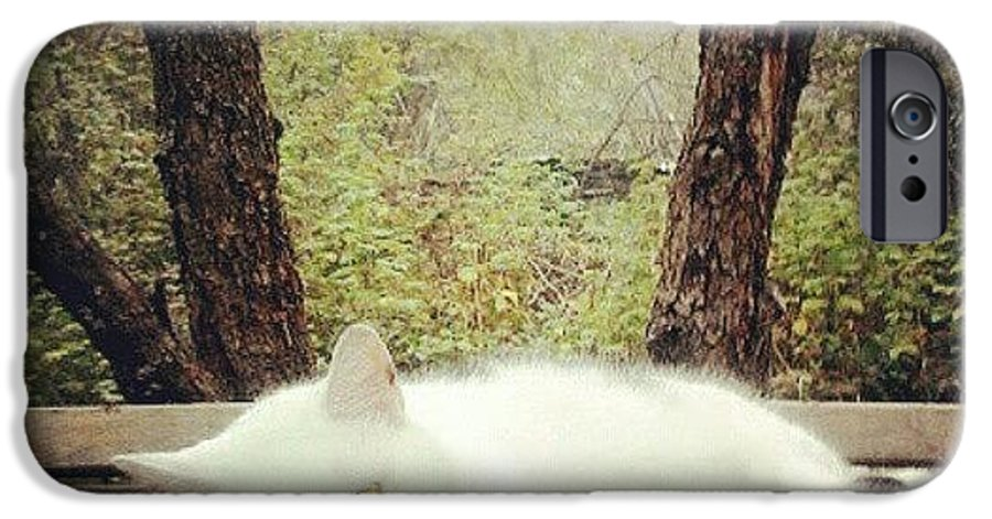 My Mum's #white #cat In #russia IPhone 6s Case