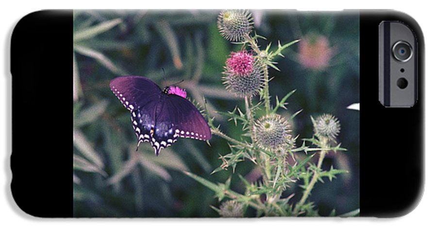 Butterfly IPhone 6s Case featuring the photograph 060207-13 by Mike Davis
