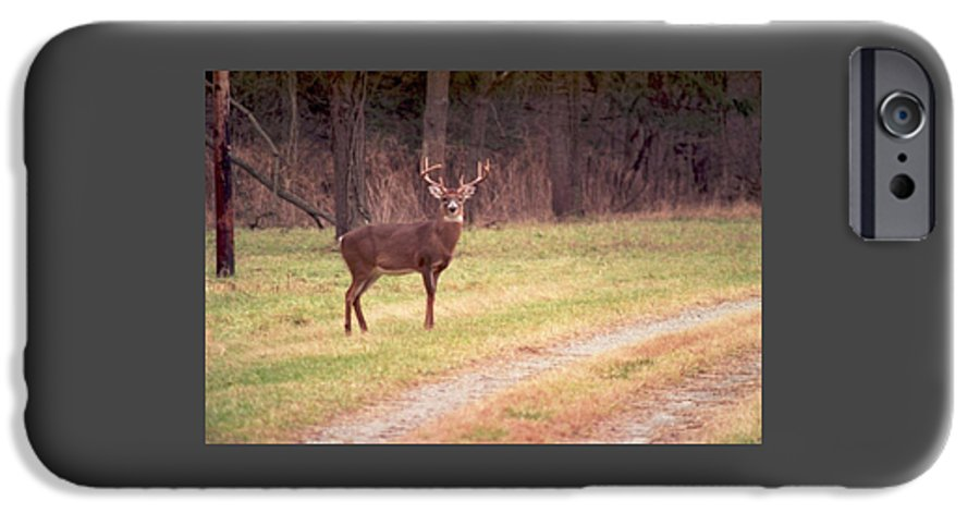 Deer IPhone 6s Case featuring the photograph 070506-17 by Mike Davis