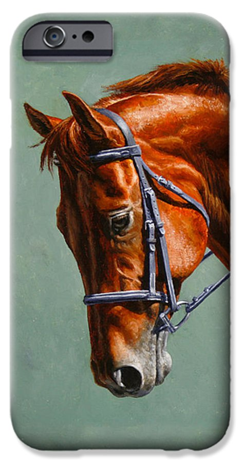 Horse IPhone 6s Case featuring the painting Horse Painting - Focus by Crista Forest