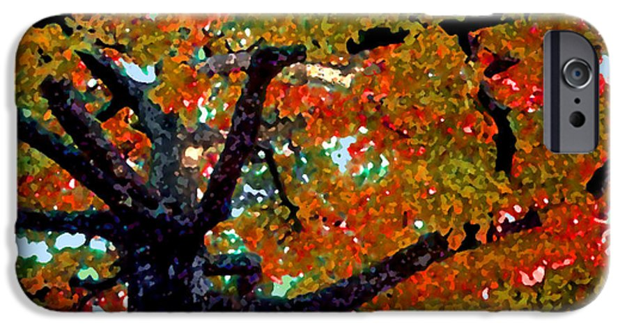 Fall IPhone 6s Case featuring the photograph Autumn Tree by Steve Karol