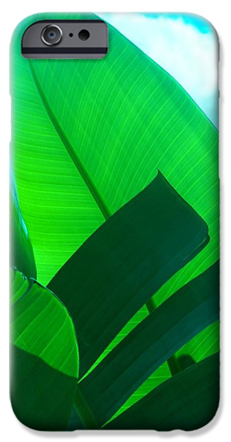 Botanical IPhone 6s Case featuring the photograph Banana Aqua by Florene Welebny