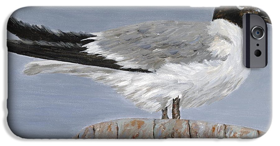 Seagull IPhone 6s Case featuring the painting Bimini Gull by Danielle Perry
