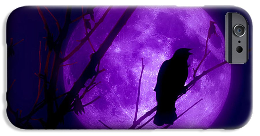 Moon IPhone 6s Case featuring the photograph Calling Out To The Night by Kenneth Krolikowski