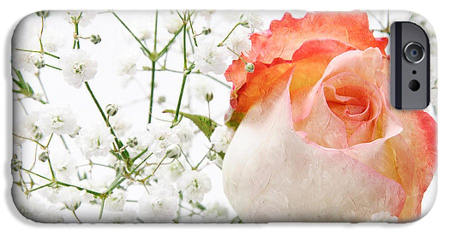 Pink Rose IPhone 6s Case featuring the photograph Cherish by Andee Design