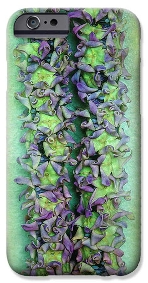 Floral IPhone 6s Case featuring the photograph Crown Flower Lei by Jade Moon