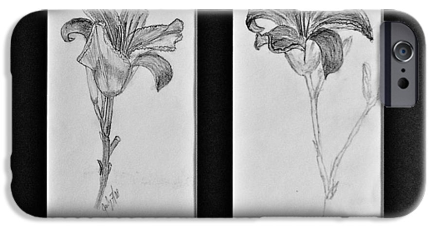 Pencil Sketches IPhone 6s Case featuring the drawing Day Lilies by Peggy King