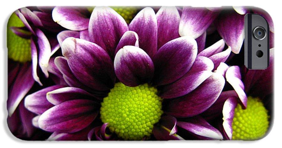 Purple IPhone 6s Case featuring the photograph Delicate Purple by Rhonda Barrett
