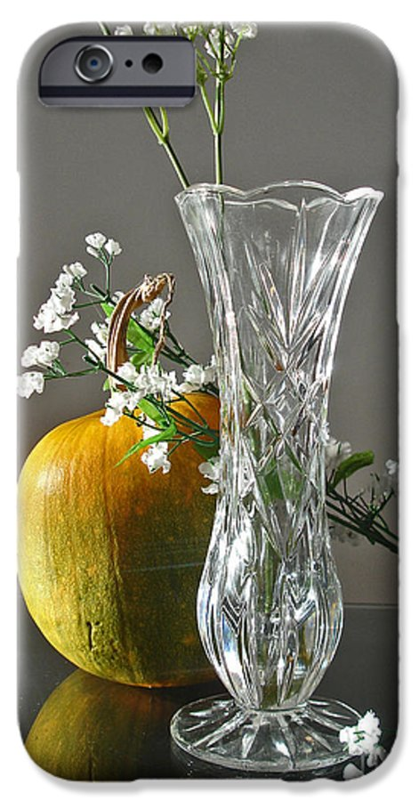 Still Life IPhone 6s Case featuring the photograph Everlasting Harvest by Shelley Jones