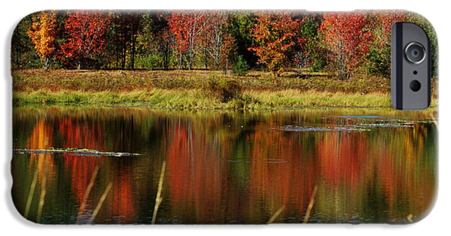 Autumn IPhone 6s Case featuring the photograph Fall Splendor by Linda Murphy