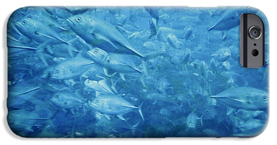 Fish IPhone 6s Case featuring the photograph Fish Schooling Harmonious Patterns Throughout The Sea by Christine Till