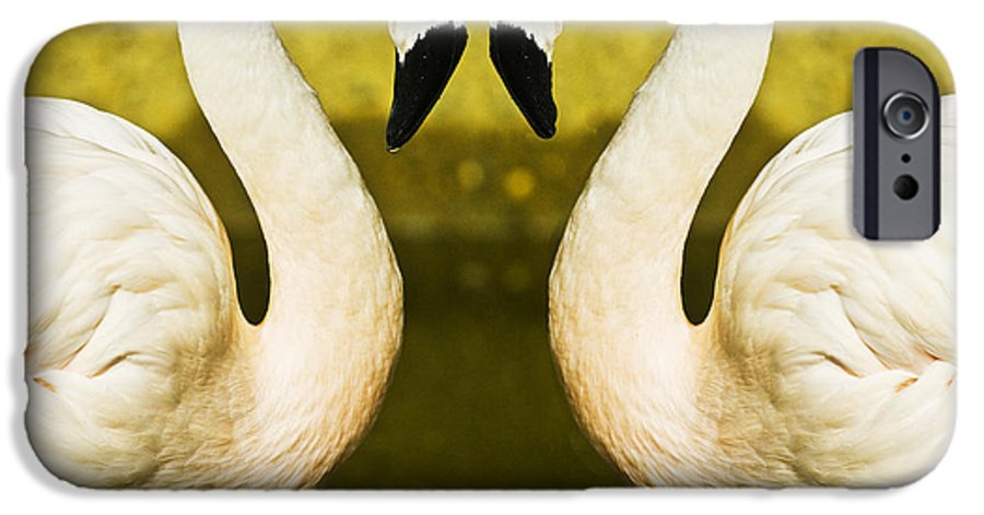 Flamingo IPhone 6s Case featuring the photograph Flamingo Reflection by Avalon Fine Art Photography