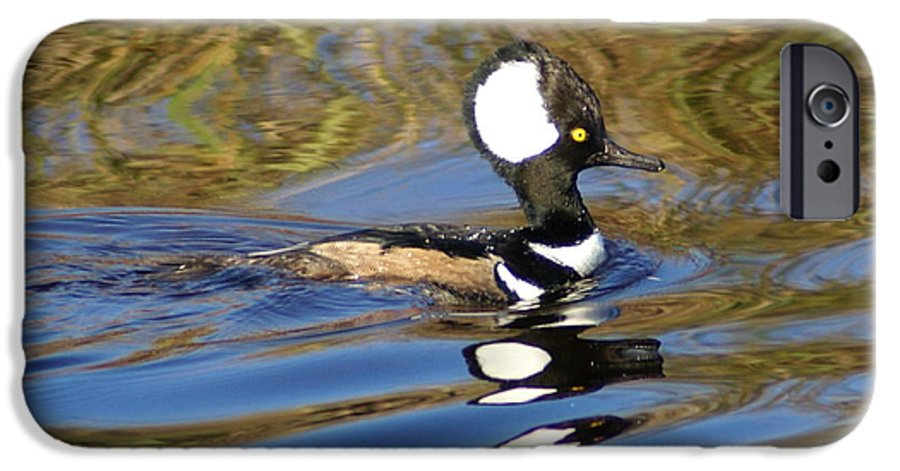 Duck IPhone 6s Case featuring the photograph Hooded Mersanger by Debbie May