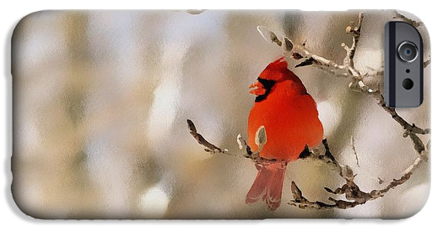 Cardinal IPhone 6s Case featuring the photograph In Red by Gaby Swanson